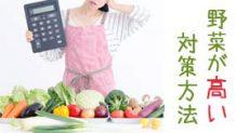 野菜が高い!価格高騰を乗り切るための対策
