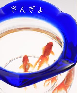 お金のかからないペットの金魚